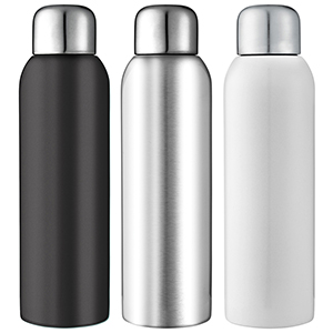 Guzzle Stainless Steel Bottle
